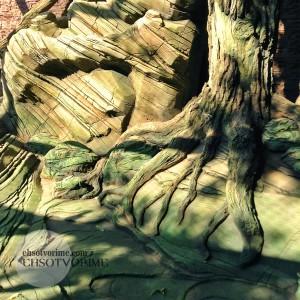 Искусственные скалы и деревья из архитектурного бетона.